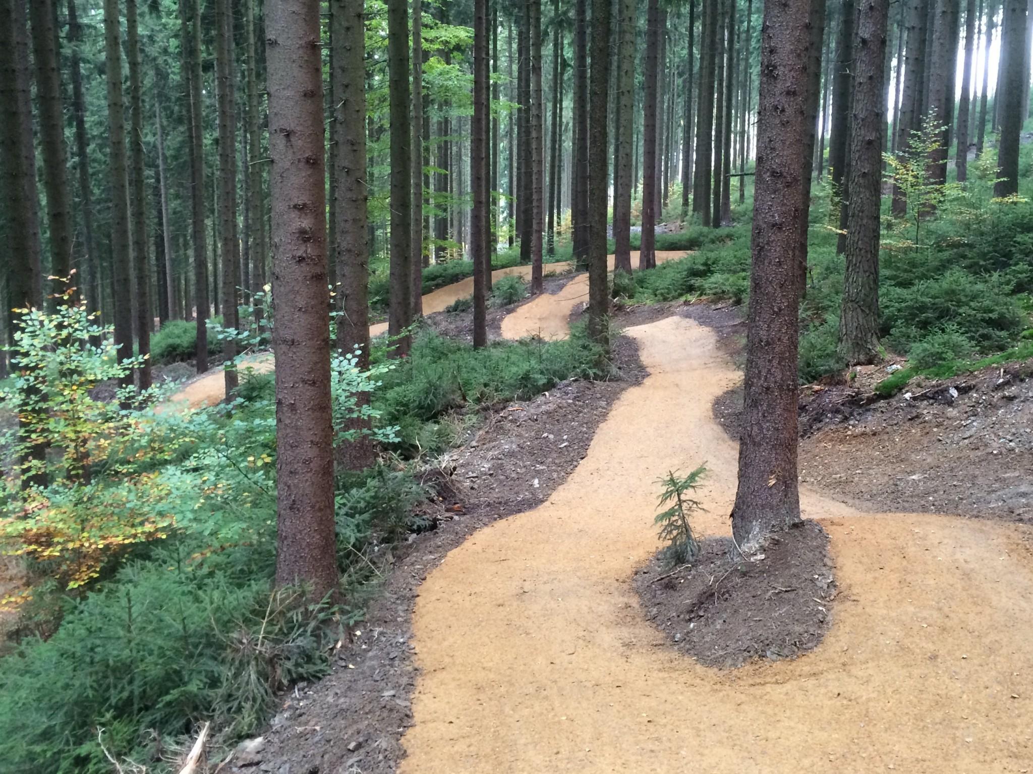 Eingebettet in die Natur soll auf dem Kornberg ein 10 km langer Trail entstehen, ähnlich dem der Bikewelt Schöneck (Fotoquelle: Schneestern GmbH & Co. KG)